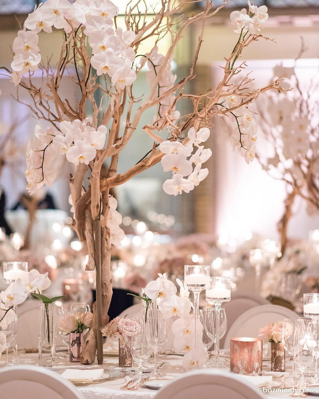 ایده جالب کاربرد ساقه های خشک درخت به همراه گل های ارکیده سفید بر روی میزهای پذیرایی مجالس خاص و باشکوه