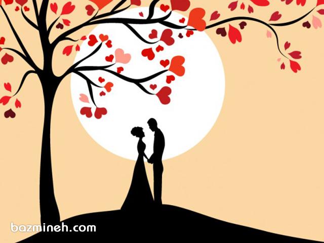 نکته هایی که ای کاش قبل از ازدواج می دانستم- سری پنجم