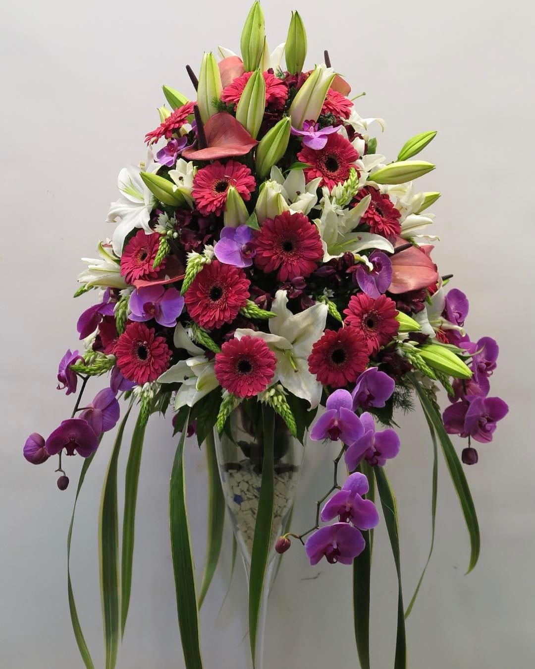 zaeemflowers_18382156_426266714425677_4443469303542448128_n.jpg