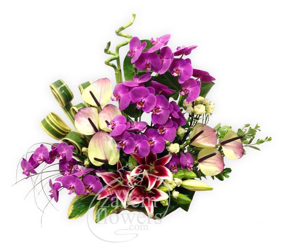 zaeemflowers_18879238_152418051967790_7453444077489487872_n.jpg