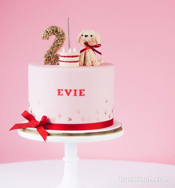مینی کیک عروسکی جشن تولد دو سالگی کودک