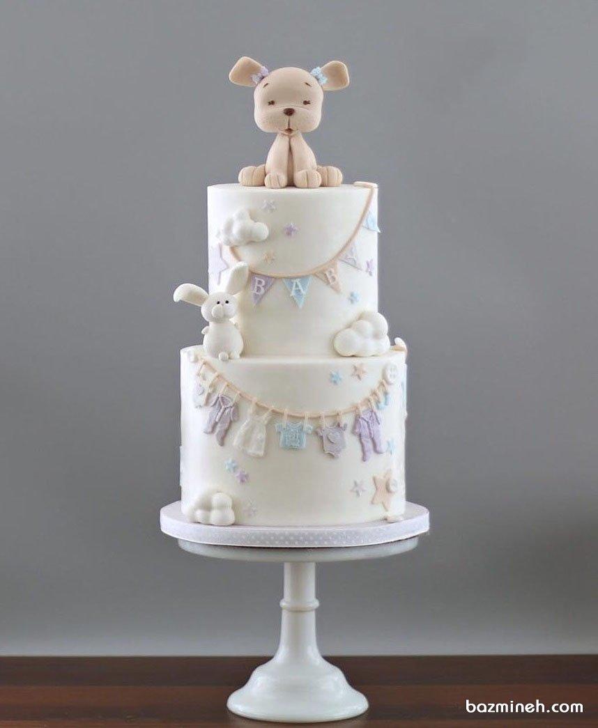 کیک دو طبقه کارتونی جشن تعیین جنسیت یا بیبی شاور