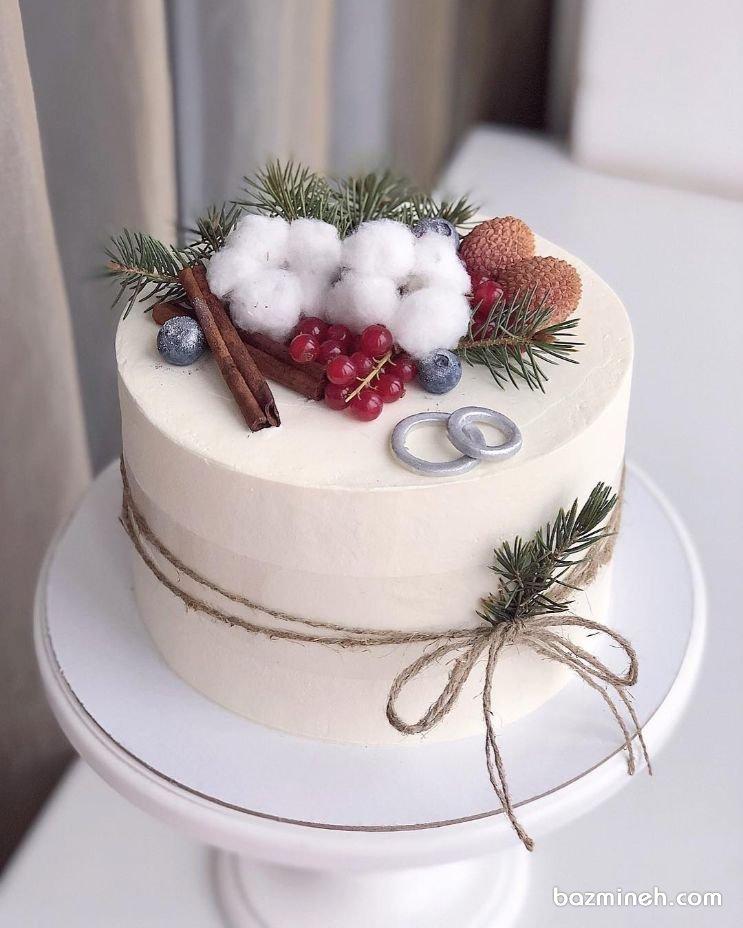 کیک خاص جشن نامزدی یا سالگرد ازدواج با تم زمستونی