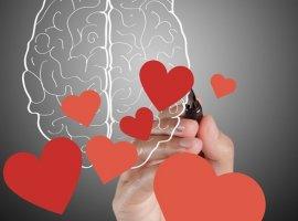 احساسیها (Feeler) و منطقیها (Thinker)، چه کسانی هستند و چه خصوصیاتی دارند؟ (تحلیل شخصیت یونگ: قسمت ششم)