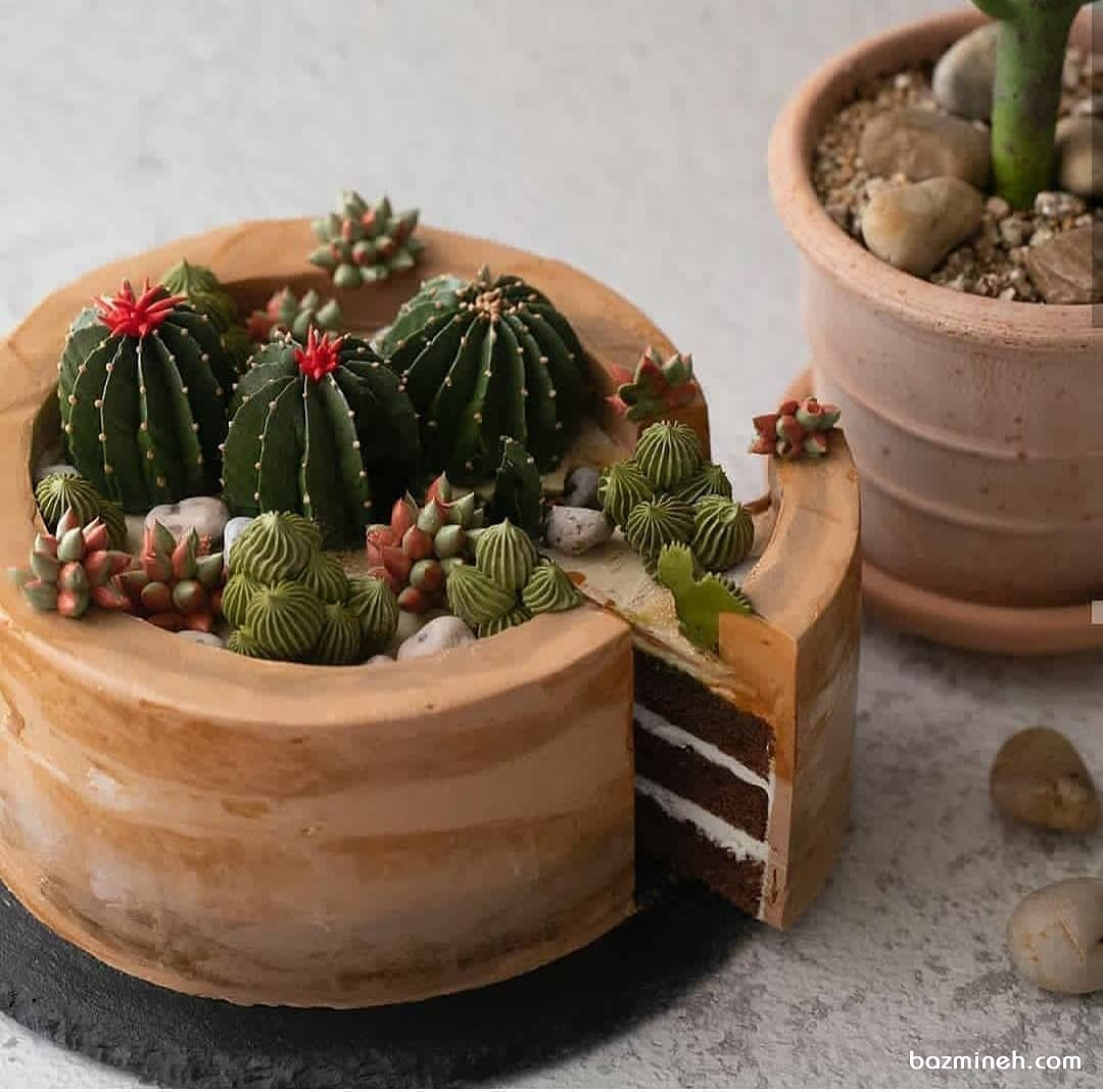 کیک تولد با طرح گلدان کاکتوس